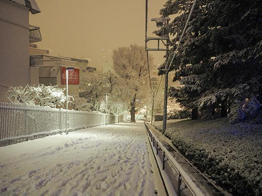 大雪の日の乃木坂5