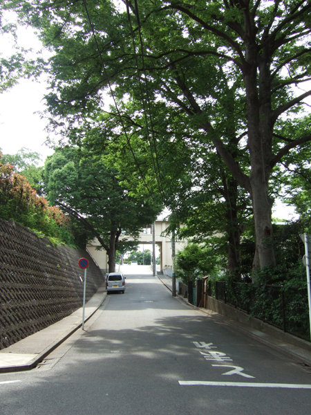 紅葉坂(NO.226)1