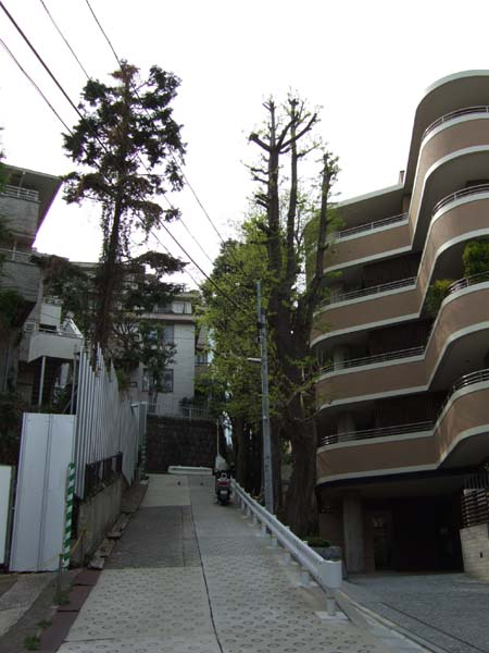 潮見坂 (NO.97) 6