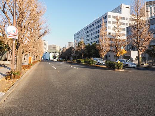 ぐみざか(NO.311)1