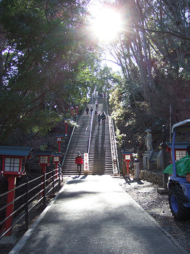 高尾山の男坂(NO.248)1