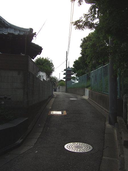 めぐみ坂(NO.230)3