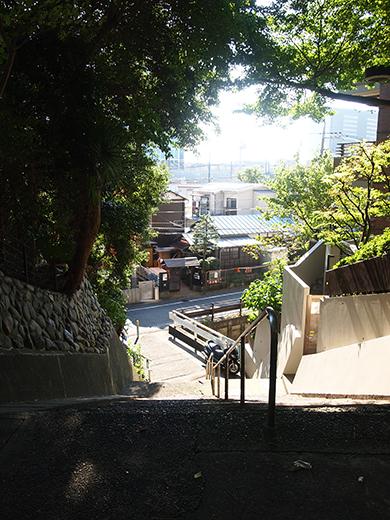 国分寺崖線の崖具合を楽しめる階段6