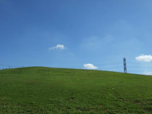 深大寺の低山2