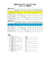 20180707 柏崎アクアカップ U-10 要項3