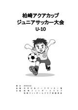 20190803 柏崎アクアカップ U-10 要項_01