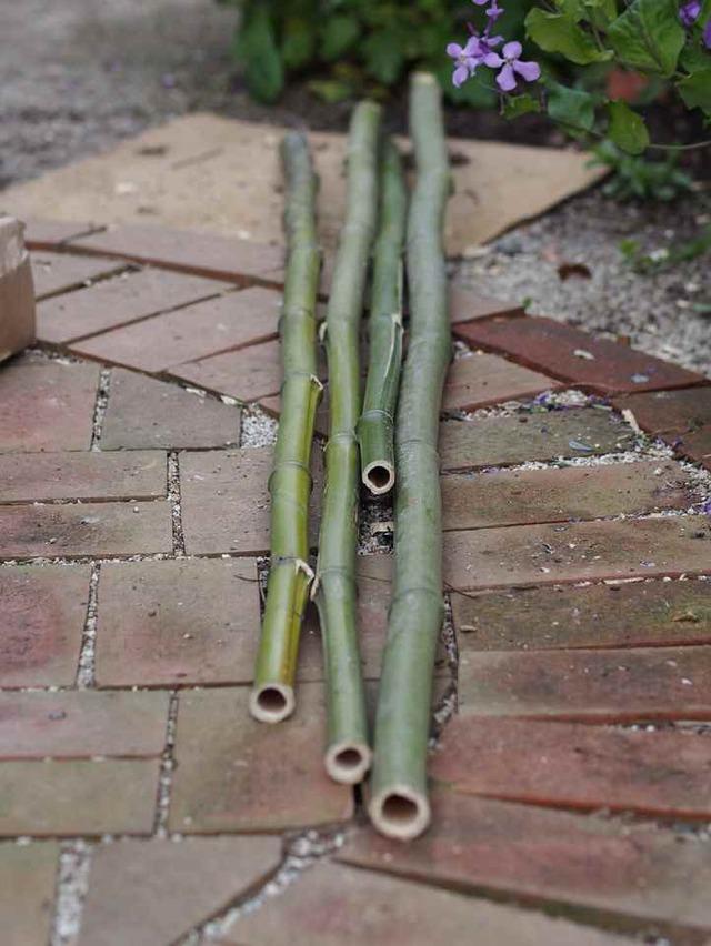 傘立て用の竹
