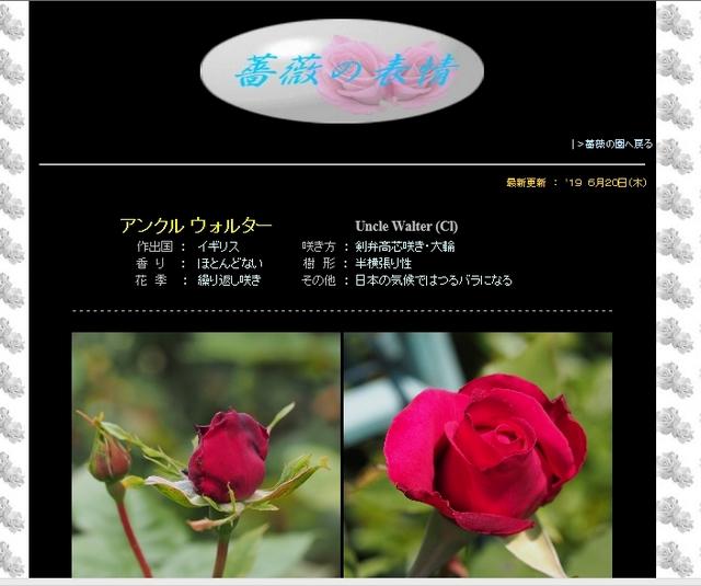 四季の庭_薔薇の園の詳細頁