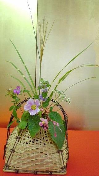 季(とき)の庭HP_尾花・秋海棠