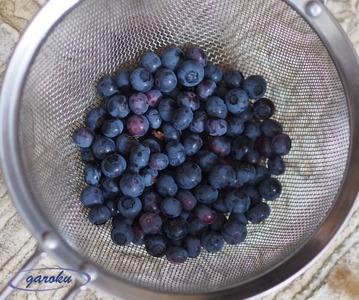 03.ブルーベリーの収穫