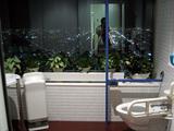 展望トイレ1