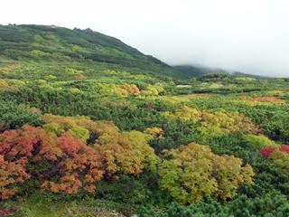 大雪山国立公園3
