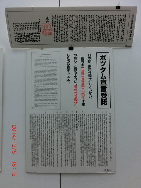 13CIMG3245