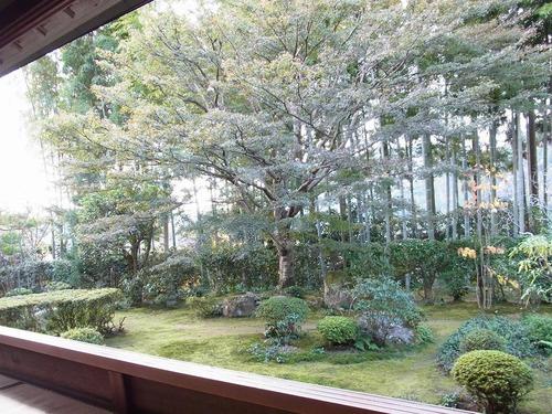 20111122ohhara -hosenin(59)
