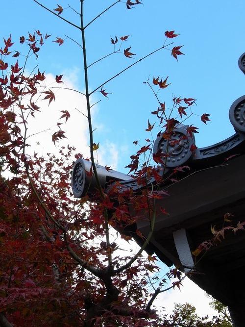 20111122ohhara -hosenin(44)