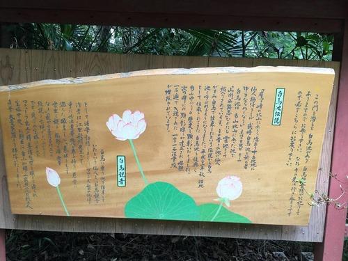 20150912joshoji (14)