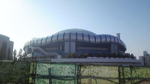 20081229.jpg