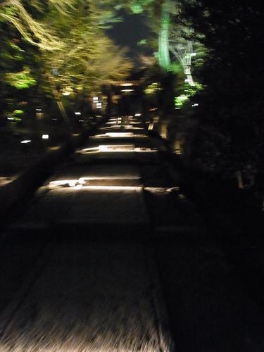 20130322koudaiji (13)