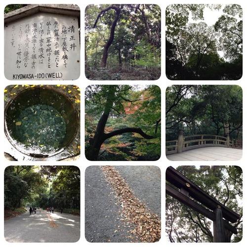 20131111meijijingu (8)