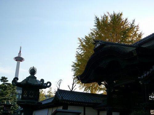 20101119higashi.jpg