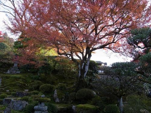 20111122ohhara -jikkoin(136)