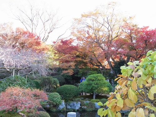 20111122ohhara -jikkoin(162)