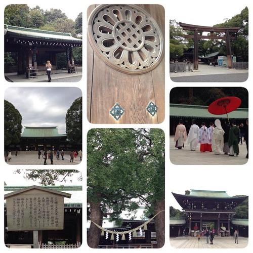 20131111meijijingu (6)