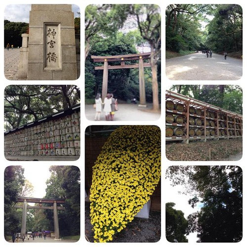 20131111meijijingu (5)