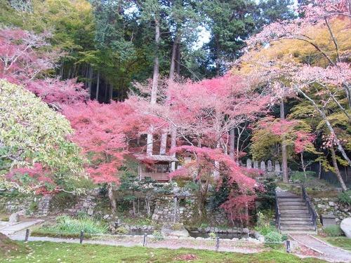 20111122ohhara -shorinin(69)