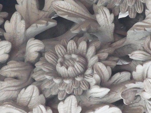 20111122ohhara -shorinin(82)