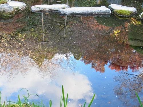 20111122ohhara -jikkoin(161)