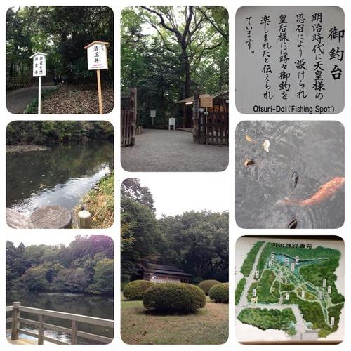 20131111meijijingu (7)