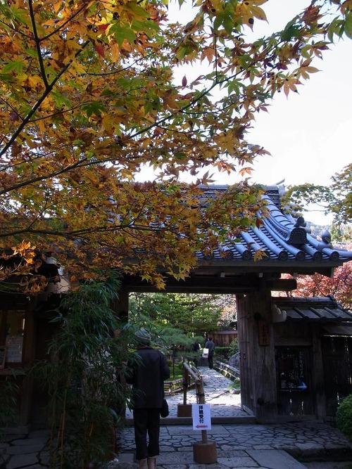 20111122ohhara -hosenin(22)