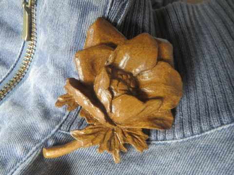 anemone-b