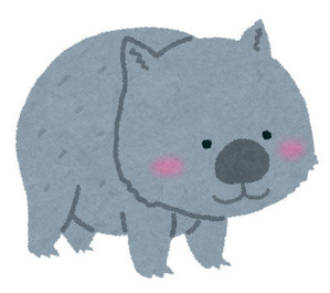 animal_wombat