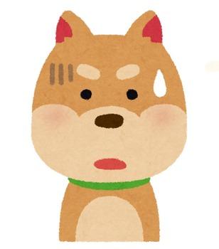 dog2_3_shock