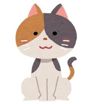 cat_mikeneko2