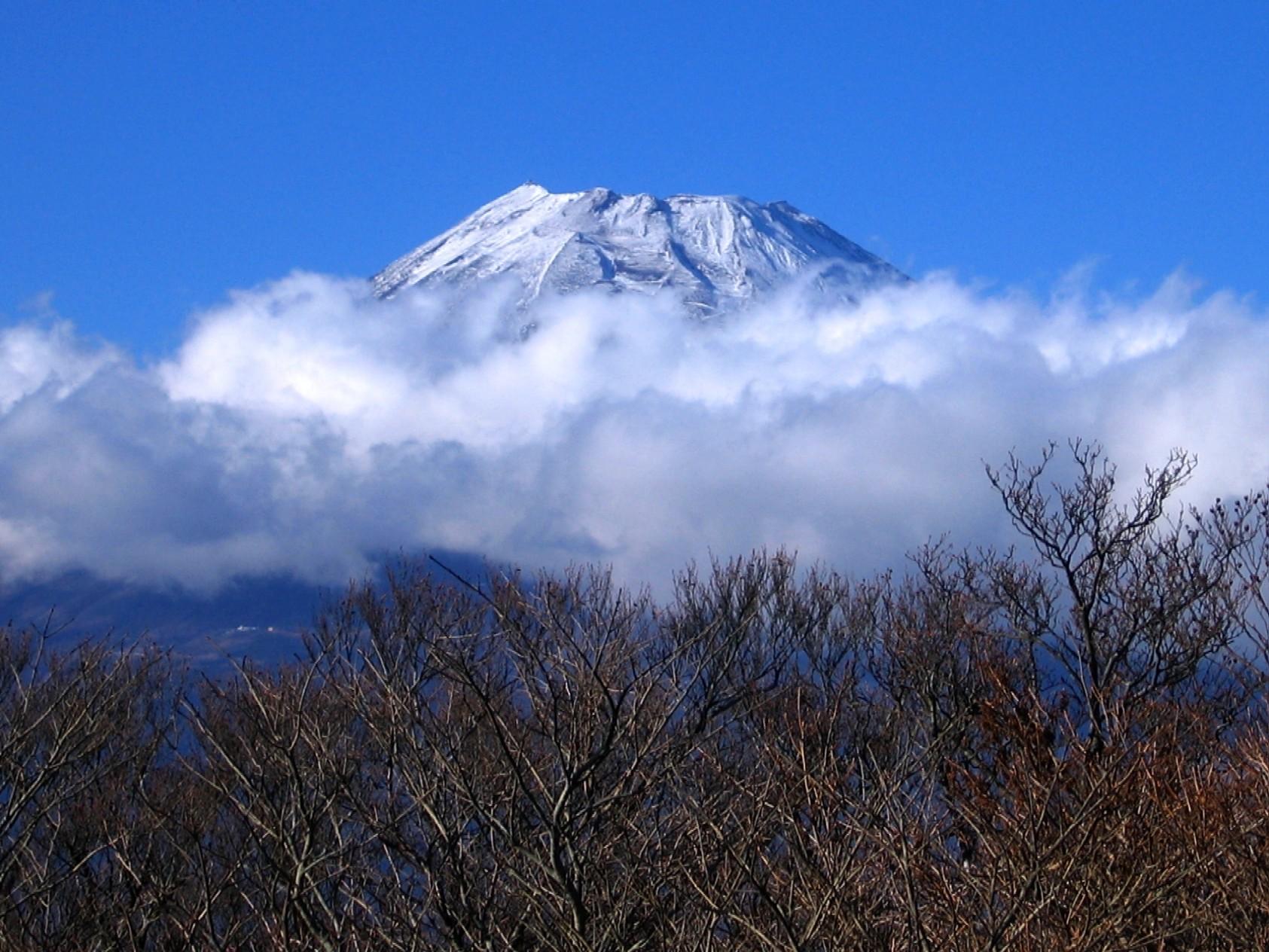 越前岳山頂より