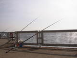本牧海釣り公園2
