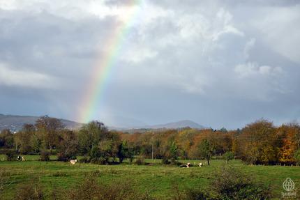 アイルランド景色2