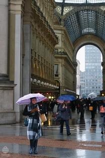 ミラノの傘8