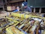 紋別魚市場2