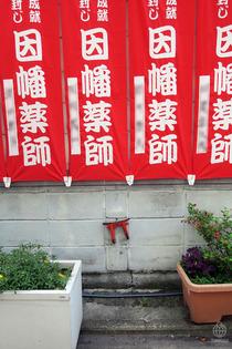 京都朝散歩2