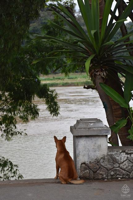 ラオス川12