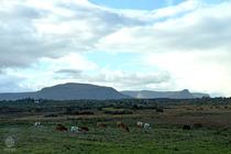 アイルランド景色4