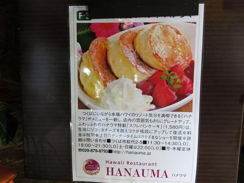 hanauma04