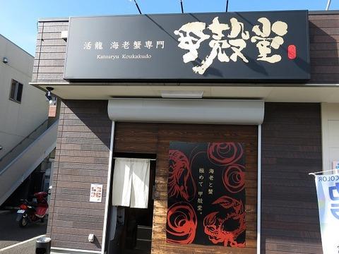 kokakudo19
