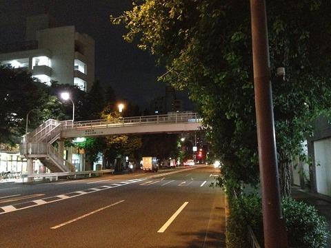 kaikoenji04