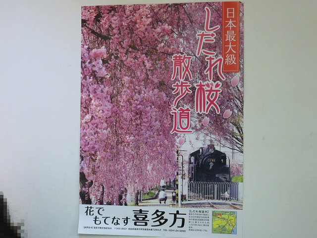 shokudohasegawa06