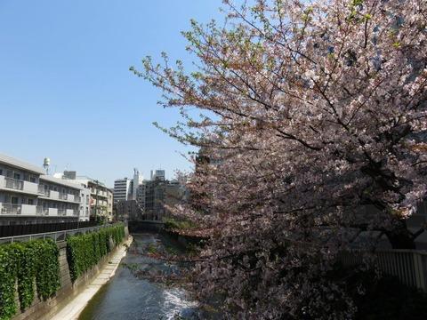 nakagawaya02